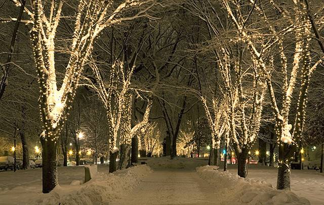 Snow covered street lined with lights